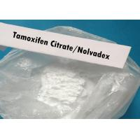 Quality Nolvadex Powder Tamoxifen Citrate CAS 54965-24-1 Anti Estrogen Bodybuilding wholesale