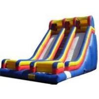 China Professional Giant slide with durable PVC tarpaulin Commercial Inflatable Slide for Child on sale