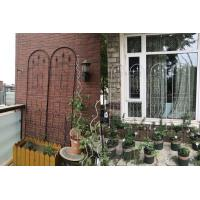 Quality Powder Coated Garden Plant Trellis Beautiful European Style Fit Outdoor Vine Plant wholesale