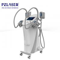 Quality Professional Body Fat Freezing Machine User Friendly Design No Downtime wholesale
