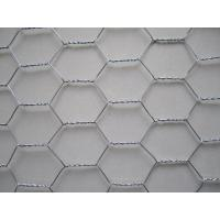 Quality Profeessional 1 Inch Galvanized Hexagonal Wire Mesh Netting For Rabbit Cage wholesale