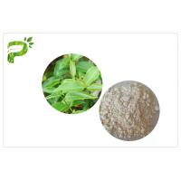 Quality CAS 989 51 5 EGCG Green Tea Extract Cosmetic Grades Epigallocatechin Gallate Ingredient wholesale