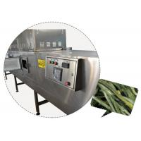 China Adjustable Speed Microwave Drying Equipment on sale