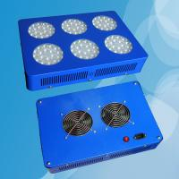 Quality 108*3w Long life-span Led Plant Growing Lights High Efficiency wholesale