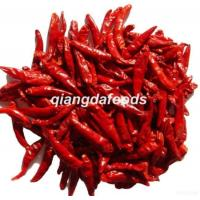 Quality Red Hot Chili Chaotian/tianying Chili wholesale