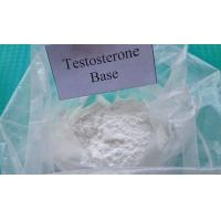 Quality Pharmaceutical Raw Testosterone Powder Testosterone Base CAS 58-22-0 Muscle Enhancement Steroids for Male wholesale