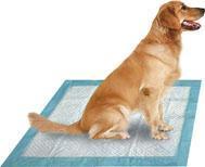 Quality Disposable Pet Pad wholesale
