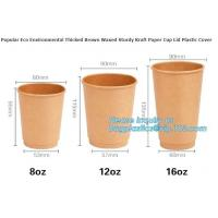 China 100% Biodegradable Disposable PLA Coated Coffee Paper Cup,9oz hot coffee paper cup with lids/ coffee to go cups/ oem dis on sale
