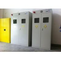 China Auto Alarm Compressed Gas Cylinder Storage Cabinets Epoxy Coating Safety Furniture on sale