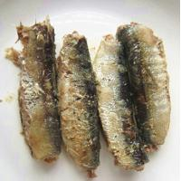 Quality canned sardines in oil wholesale