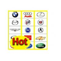 Quality All Auto software List For All World Cars wholesale