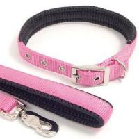 Quality Nylon Dog Collar (SD-893) wholesale