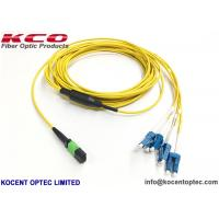 Quality Duplex Harness MPO MTP Patch Cord 40G 100G For Data Center wholesale