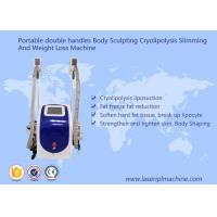 China Body Sculpting Cryolipolysis Slimming Machine Portable Style Weight Loss Machine on sale