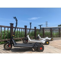 China Precursor 250W Self Balancing Electric Scooter With 11.3Ah Battery on sale