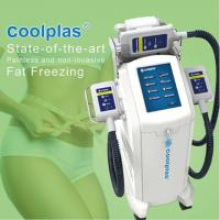 Quality No Downtime Cryolipolysis Fat Freezing Machine Fat Loss Machines 3 Handles wholesale