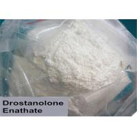Quality Drostanolone Masteron Enanthate Anabolic Steroid Powder Mass Muscle Gainer wholesale