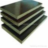 Quality Black &brown film faced plywood wholesale