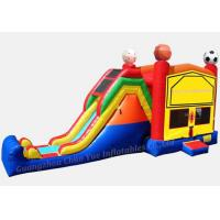 Quality Durable Inflatable Slide, Water Slide for Water Park (CY-M2147) wholesale