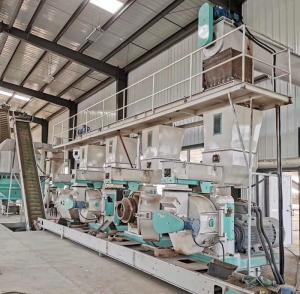 Quality Horizontal Wood Waste Pine Material Pellet Production Line Pellet Makine wholesale