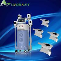 Quality Hot Saled Europe and America ! China Best Professional Cryolipolysis Machine With 4 Handle wholesale