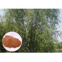Quality Salicin 98% Antifungal Plant Extracts White Willow Bark Extract Relieving Headache wholesale
