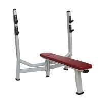 Quality Low Maintenance Weight Bench Rack Equipment  Spraying Coating Customized Color wholesale