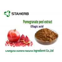 Quality Ellagic Acid Antioxidant Dietary Supplement , Natural Antioxidant Supplements wholesale