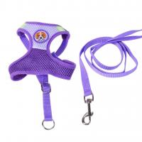 Lighted Collars For Small Dogs