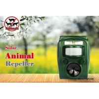 Buy cheap Graden Ultrasonic Solar Animal Repeller ASF-006 Dog Cat Deer Repeller by Ultrasonic Signal and Flashing Frighten Animal from wholesalers