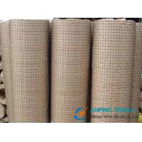 Cheap Electric Galvanized Welded Wire Mesh, Bright Color and Smooth Surface for sale