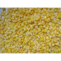 Buy cheap Canned Corn Factory, Non GMO Canned Corn, Canned Sweet Corn in Tin A10 from wholesalers