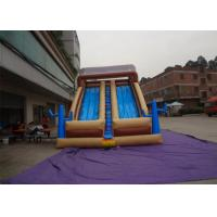 Quality Funny Outdoor Inflatable Slide , Inflatable Wet / Dry Slide For Kids wholesale