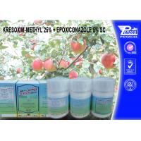 Quality KRESOXIM-METHYL 25% + EPOXICONAZOLE 5% SC Pesticide Mixture 143390-89-0, 106325-08-0 wholesale