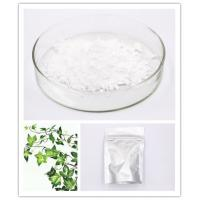 Quality Caulosapogenin Hederidi Hederagenin 465-99-6 White Crystalline Powder HPLC 98% wholesale