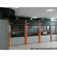 Quality Wholesales Customization Fuming Hood With The Pipe of Fume Cabinet For Oversea Sellers wholesale