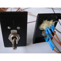 Quality 125/250VAC Electronic Micro Toggle Switch , Industrial Toggle Switches On Off wholesale