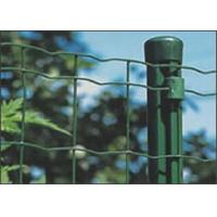 Quality Assembled Electric Galvanized Welded Holland Wire Mesh Euro Panel Fencing wholesale