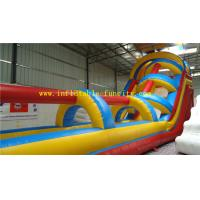 Quality Colorful Hippo Inflatable Water Slide , Inflatable Dry Slides For Aqua Water Park / Playground wholesale