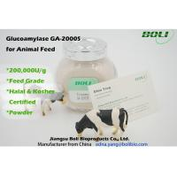 Cheap High Activity Biological Enzymes 200000 U / g , Animal Feed Amyloglucosidase Enzyme for sale