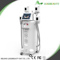 China Top 1 vertical strong cooling system cryo cryolipolysis fat freezing machine from China on sale