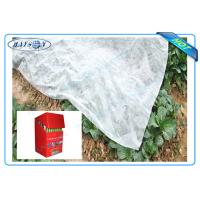Quality Degradable Weed Control Mat Made from Black or White Anti-UV PP Non Woven Fabric wholesale
