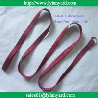 China 120cm Long Nylon Dog Pet Leash  Lead For Daily Walking (1.0cm~2.5cm in width) on sale
