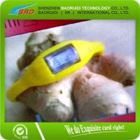 China Water proof RFID Silicone Wristband on sale