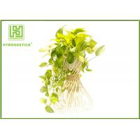 Quality Handled Natural Bamboo Flower Pots For Green Garden Plants Customized  Shape wholesale