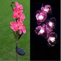 Quality Pink Phalaenopsis Stainless Steel Solar Garden Lights, Flower Solar Powered Outdoor Lights wholesale