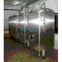 Quality Stainless steel bright beer tank beer storage tank beer brewing machine wholesale