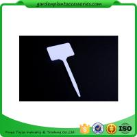 Quality White Durable PP Plant Markers / Garden Plant Labels For Garden 13.7*5.5cm Garden Plant Marker wholesale