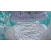 Quality High Purity Testosterone Propionate Raw Testosterone Powder / Injectable Liquid  CAS 57-85-2 wholesale