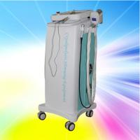 Quality Multifunction Vacuum Cryolipolysis Slimming Machine AC 220V for Beauty Clinic wholesale